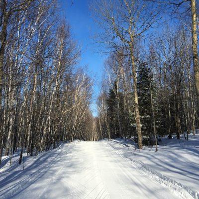 BN18_Trail