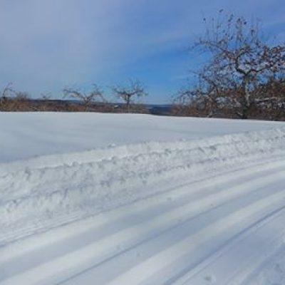 FFF_wintertrail(2)