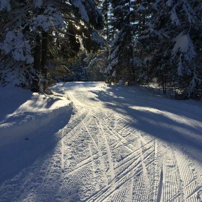FSTC18_trail