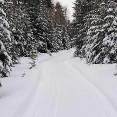 TBR_trail